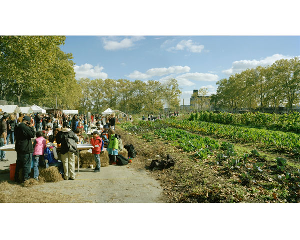 Red Hook Community Farm